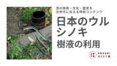日本のウルシノキ 樹液の利用